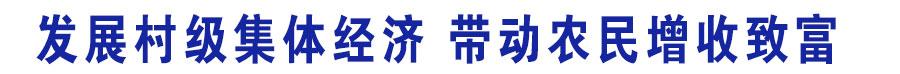 鍙戝睍鏉戠骇闆嗕綋缁忔祹 甯﹀姩鍐滄皯澧炴敹鑷村瘜