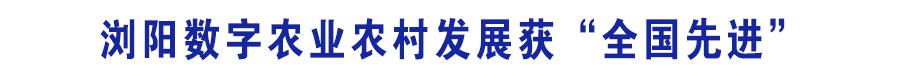 娴忛槼鏁板瓧鍐滀笟鍐滄潙鍙戝睍鑾封€滃叏鍥藉厛杩涒€? width=