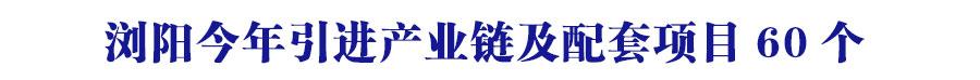 浏阳今年引进产业链及配套项目60�? width=