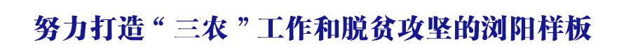 鍔姏鎵撻€犫€滀笁鍐溾€濆伐浣滃拰鑴辫传鏀诲潥鐨勬祻闃虫牱鏉? width=