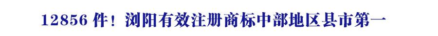 12856件!浏阳有效注册商标中部地区县市第一