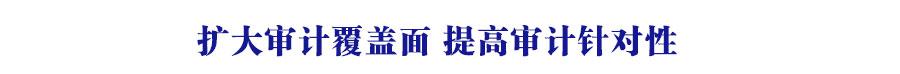 鎵╁ぇ瀹¤瑕嗙洊闈?鎻愰珮瀹¤閽堝鎬? width=
